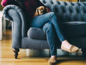 koude-voeten-hond