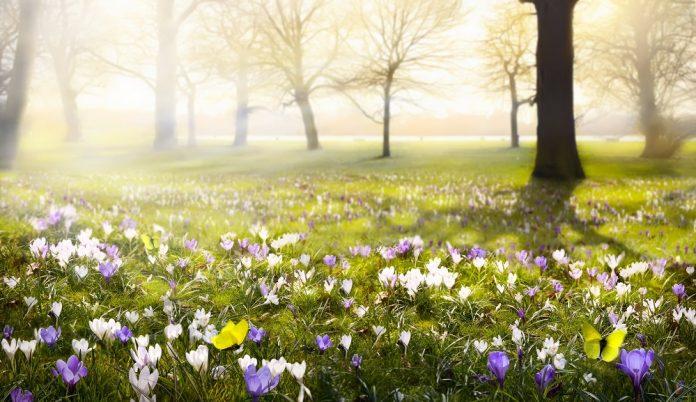 De drie fijnste buitensporten voor het voorjaar - GezondVoorstel
